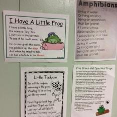 Frog Songs